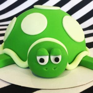 Boltaartje-schildpad-01